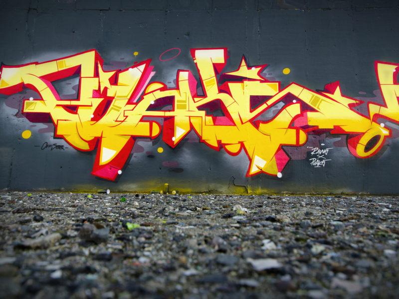 puaks_raws3